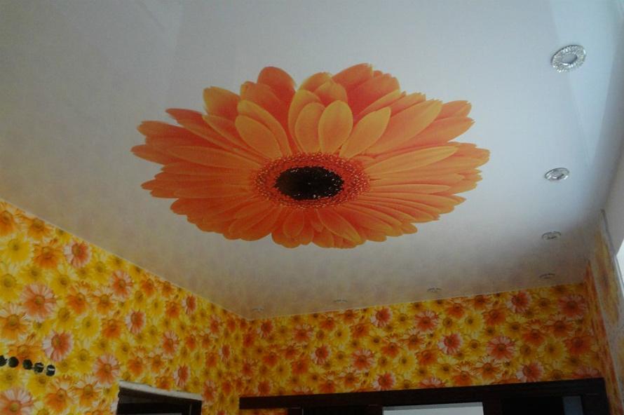 Натяжные потолки Дмитров - Фотопечать цветы на натяжных потолках 20 примеров. 6
