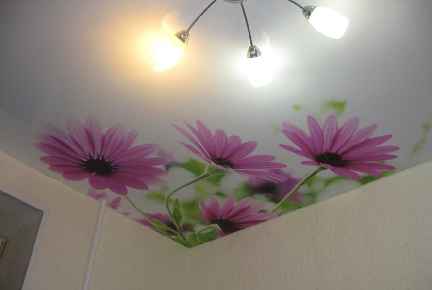 Натяжные потолки Дмитров - Фотопечать цветы на натяжных потолках 20 примеров. 7