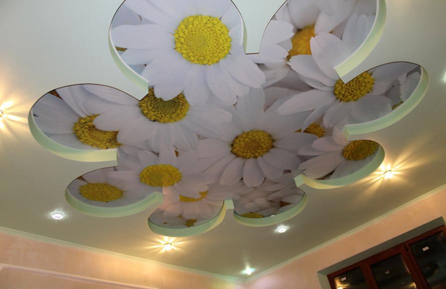 фотопечать на потолок цветы ромашки