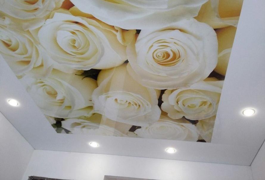 Натяжные потолки Дмитров - Фотопечать цветы на натяжных потолках 20 примеров. 25